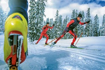 Cross-country skiing in Flachau - cross-country skiing courses - ski school Flachau